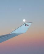 機内から観る仲秋の明月