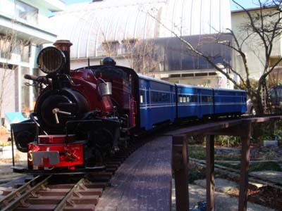 ダージリン・ヒマラヤ鉄道の画像 p1_16