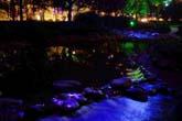 夜の公園:クリックで拡大