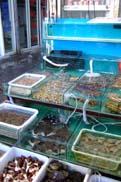 銅川水産市場:クリックで拡大
