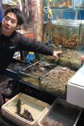 新鮮な魚介が並ぶ:クリックで拡大