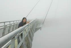 世界は白い霧に覆われていた:クリックで拡大