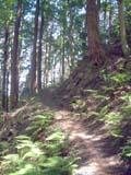 釈迦岳・ポンポン山