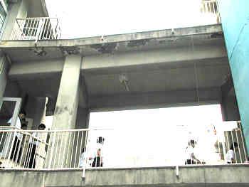 建物同士をつなぐ渡り廊下は、個々の建物の揺れる周期が異なるため、建物に挟まれる形で破壊されるケースが多くありました。(神戸の震災被害資料のページ参照)