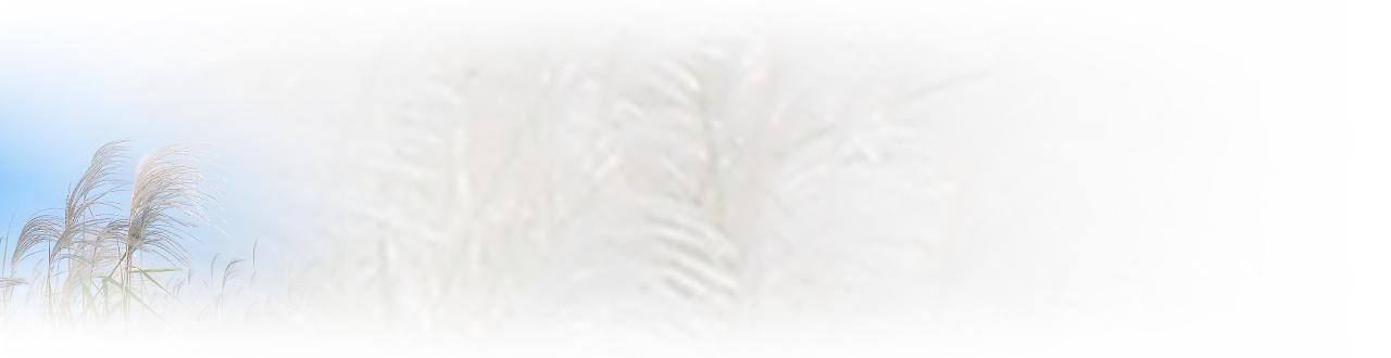 背景图片 - 老排长 - 老排长(6660409)