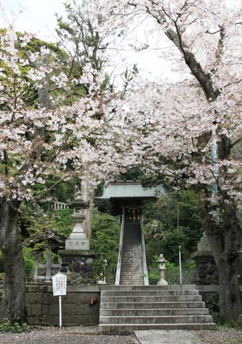 甘縄神明神社 鎌倉 山の音