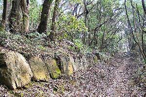 筑紫王朝(神籠石1)