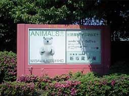 ANIMALS+PLUS